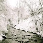 Snow galore